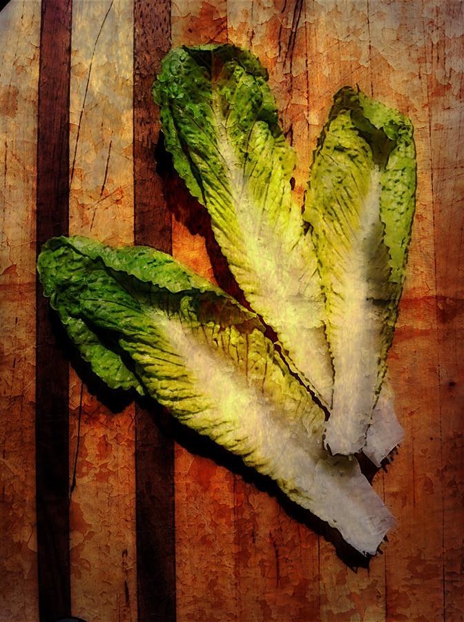 Lettuce on breadboard