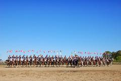 O velho regimento (Eduardo Amorim) Tags: brazil horses horse southamerica brasil caballo cheval caballos soldiers cavalos pelotas pferde cavalli cavallo cavalo pferd riograndedosul pampa soldaten hest hevonen campanha brsil chevaux  soldados amricadosul hst  amriquedusud  soldats  sudamrica chivalry suramrica soldati amricadelsur  cavalaria sdamerika cavalleria caballeria   caballera costadoce americadelsud chevalerie exrcitobrasileiro  americameridionale brazilianarmy eduardoamorim iayayam yamaiay ejrcitobrasileo armebrsilienne brasilianischearmee esercitobrasiliano ritterlichkeit regimentomanuellusosrio 3regimentodecavalariadeguarda