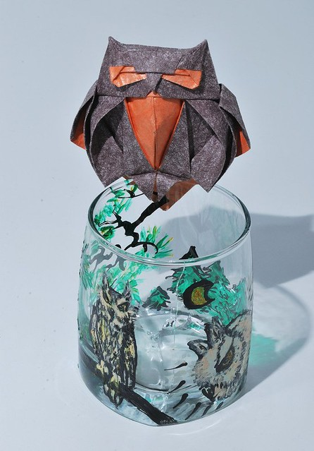 Совы (Owls)