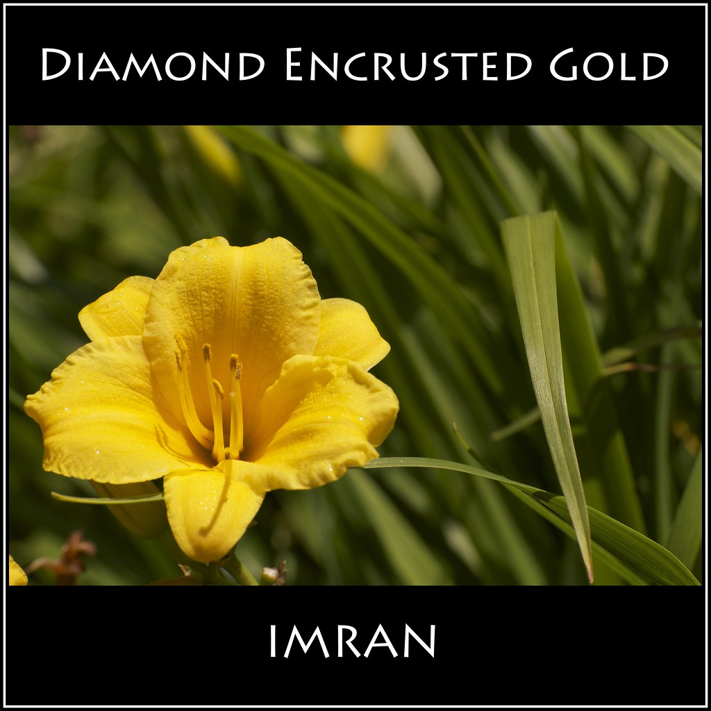 Need Lots Of Green For Diamond Encrusted Gold — IMRAN™ ---(Click To View Detail)  — 400+ Views!