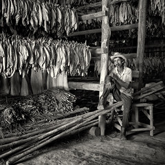 the dryer (urchino) Tags: bw square cuba cigars vinales tobacco pinardelrio dryinghouse lumixgf1 20mmpancake