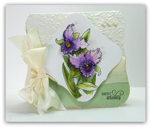 OrchidNWMA