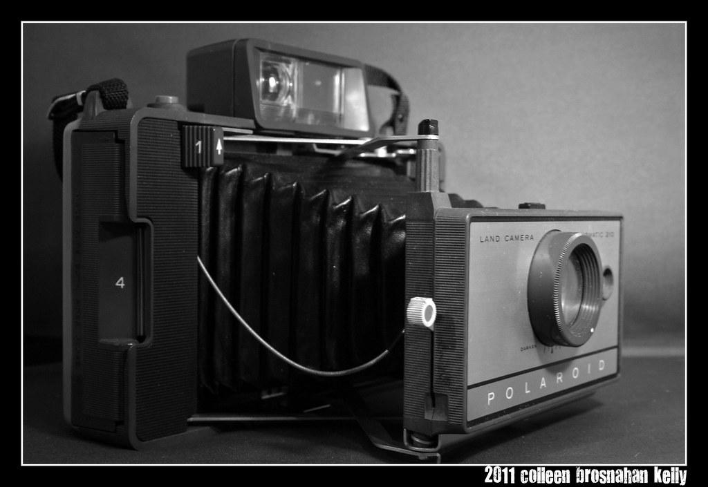 103/365 polaroid land camera 210