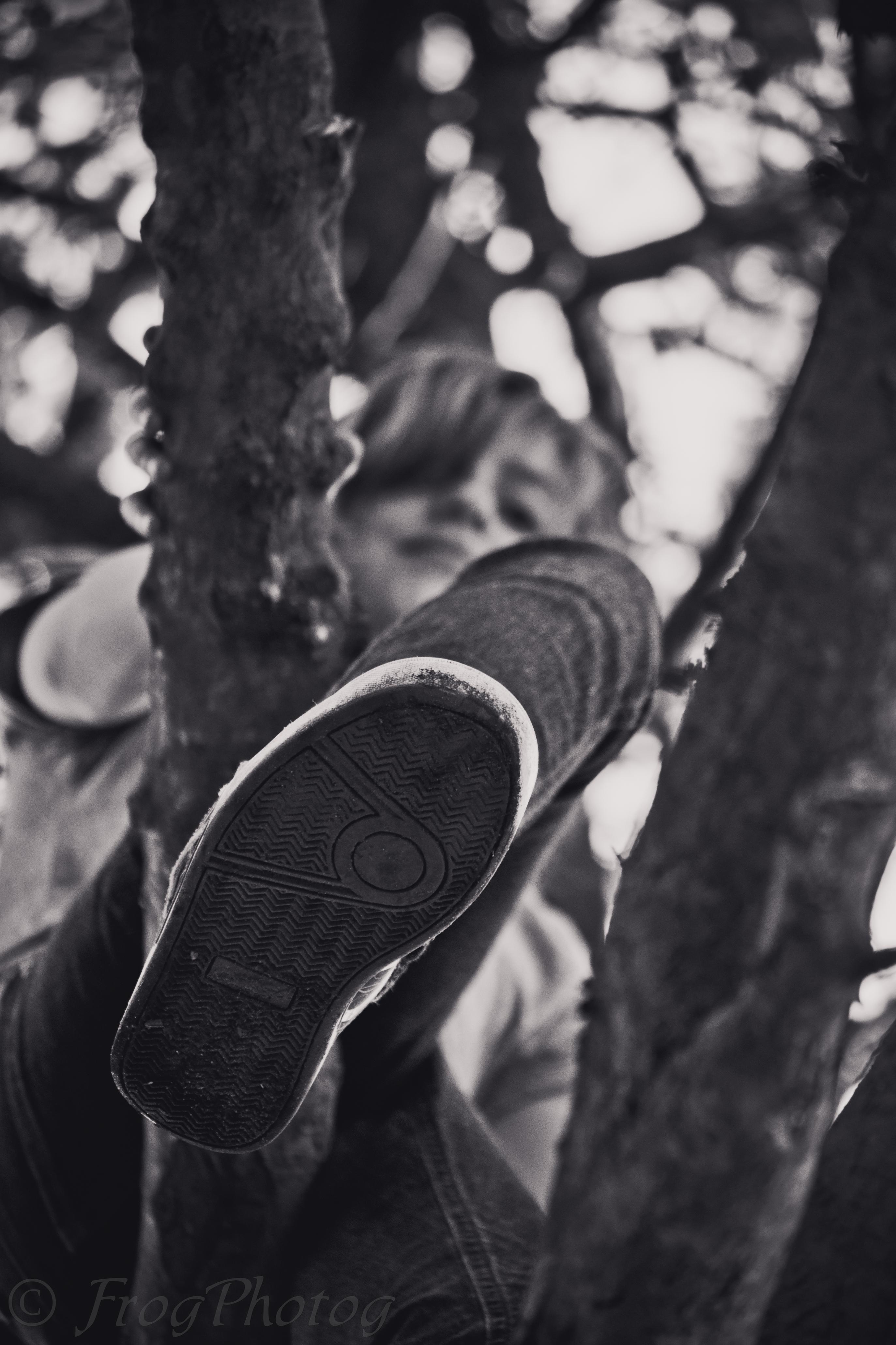 87/365 ~ The Climb
