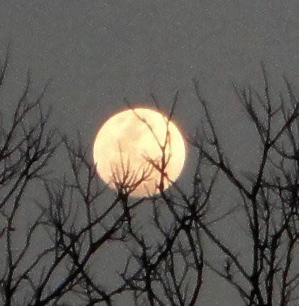 Luna (casi llena) previa a la Pascua