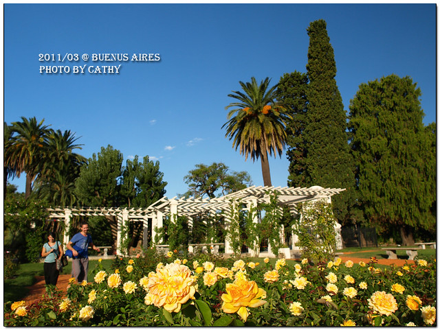 rose plaza-4