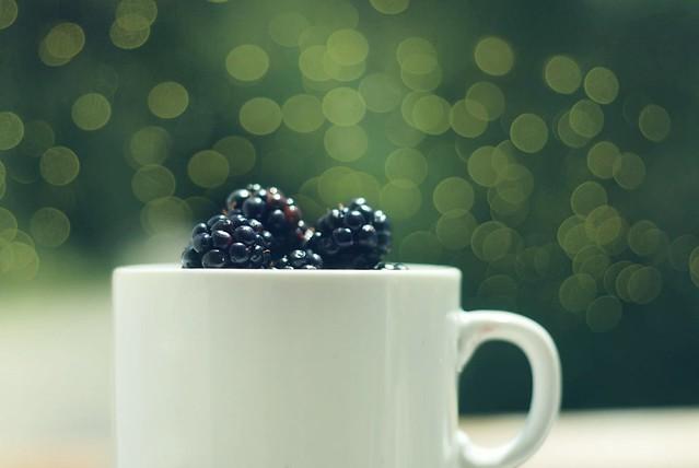Boysenberries Patagónicos