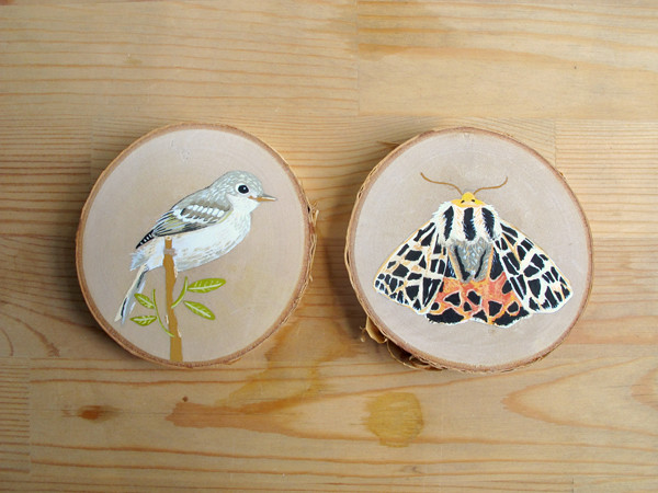 wood slice-bird and moth