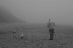 (Skellibobs) Tags: sea mist beach dogs fog coast atmosphere east bichon fret reighton