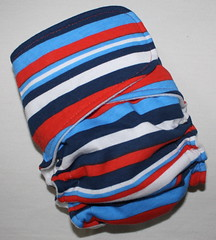 Patriotic Stripes Skinny Britches AI2