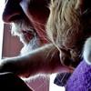 amici (archifra -francesco de vincenzi-) Tags: italy cat chat gato amici viola gatto ciccio micio molise isernia archifraisernia absolutelyperrrfect francescodevincenzi