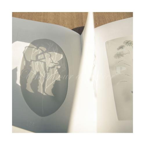 Ligne 4 by un amour de papier
