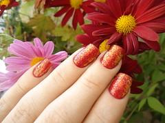 Chachacha - Hits (Aline K.B.) Tags: floral flor vermelho granada hits cha pedra risque chachacha unha flocado