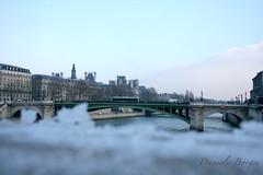 (DanieleBorges) Tags: snow paris neve laneige riosena rivirsn pontsurlariviresn