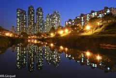 Dogok Towers (Seoul) (renan4) Tags: park city blue reflection tower water night skyscraper buildings river lights evening nikon asia stream south towers palace korea hour seoul nikkor 1224mm gangnam   yangjae d80 dogokdong dogok gaepodong yangjaecheon