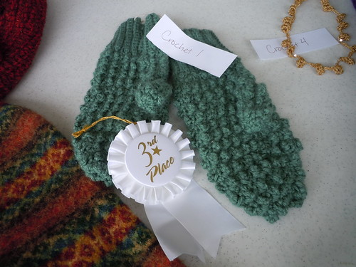 I placed third in the crochet contest!