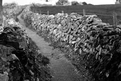 Der Weg./ The Path. (stefanweihs) Tags: uk england blackandwhite bw white black canon eos unitedkingdom path stones steine schwarz weg bonsall weis schwarzweis 40d stefanweihs steppinglane