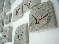 Flight - concrete and nails    -   (Sharon Pazner) Tags: bird concrete telaviv rust cement flight nails cemento beton cimento      betone  sharonpazner