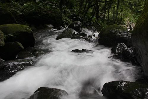 新北市三峽雲森瀑布_30_2011.06.28