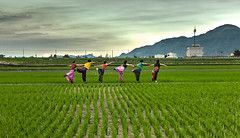 () Tags: hualien hdr people