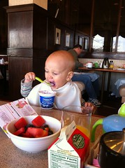 THIS. IS. YOGURT!!!