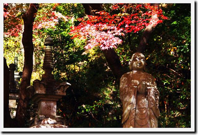 20101119_105444_長谷寺_登廊