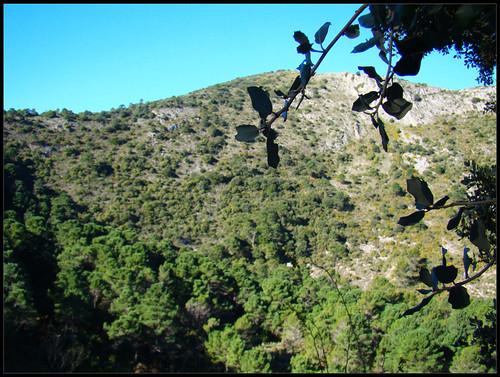 Ruta Juanar - La Concha (5)