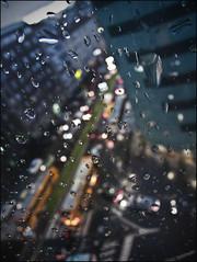 Light Drops ()0SH) Tags: city light italy milan bus cars rain town drops italia traffic milano streetphotography pioggia autobus metropolitan luce città traffico automobili gocce