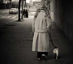walk on by (explored) (pamela ross) Tags: woman usa dog newyork pen 50mm dof united olympus lonely states ep1