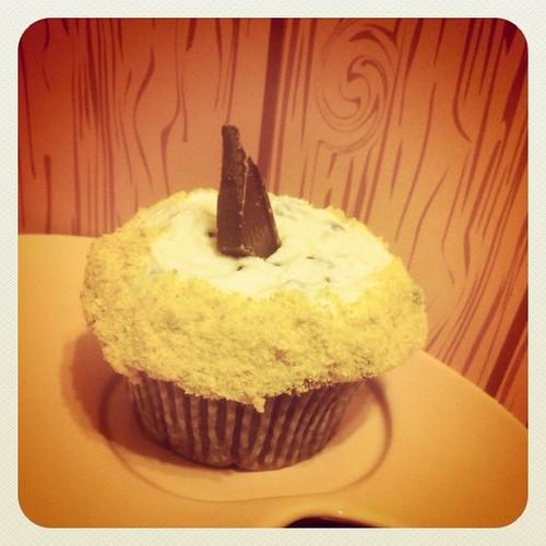Vegan s'more cupcakes #vegan #s'mores #cupcakes
