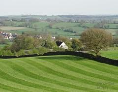 Belper (Hilary bornagain1198) Tags: shadow house tree nature field grass god farm creation hedge