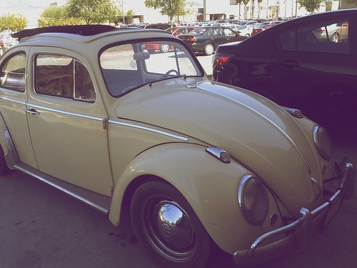 Day 100 - Volkswagen Beetle