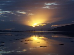 Glorious Glow, Moray Firth, Inverness, March 2011 (allanmaciver) Tags: bridge sun reflection water set clouds golden glow awesome glorious inverness allanmaciver