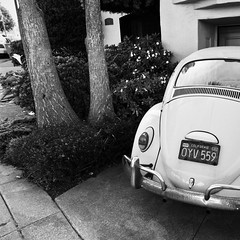 PunchBuggyOldSchool (catlucia) Tags: sf sanfrancisco blackandwhite bw vw blackwhite sfist alienskin