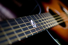 125: Playing (Shane Montross) Tags: music raw guitar strings inlay