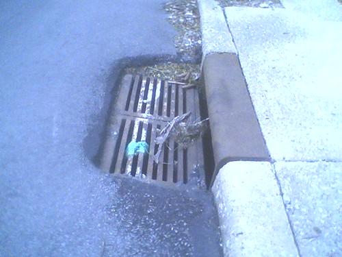 Steuben St drain grates, #5 of 6
