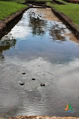 Water Garden -  Sigiriya