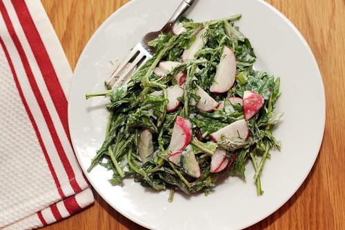 cucumber radish salad