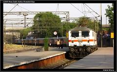 12005 New Delhi Kalka Shatabdi Express (Vishal Khare) Tags: camera new city two india station train canon evening is long state delhi capital curves platform fast railway powershot northern mandi hog zone 12005 himachalpradesh kalka indianrailways uttarpradesh sabzi ghaziabad irfca 30277 sx10 wap7
