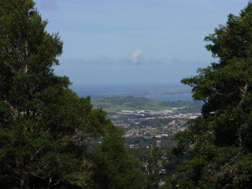 Mt Keira 2