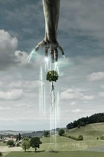 Tree For Breakfast - Detail God's Hand