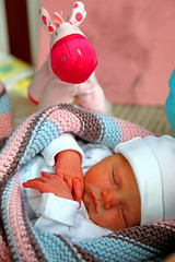 Little Princes Anne Sofie (My niece!!!!) (kees straver (will be back online soon friends)) Tags: pink blue horse baby girl canon toy hands little niece pony princes eyesclosed oes newborne sleeptight keesstraver 5dmarkii