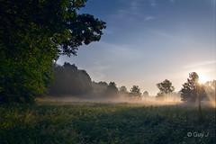 Langdorp (B) 6:17 Hr (Guy L Janssens) Tags: sunrise landscape haze belgië hazy landschappen langdorp aarschot zonsopkomst sigma1850mmf28exdcmacro demervallei canoneos550d