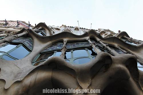 curvy windows