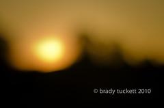 Song in the Night (brady tuckett) Tags: sunset sun nature pentax bokeh 55mm lensflare m42 brady manualfocus tuckett screwmount  autotakumar autotakumar55mmf22  bradytuckett