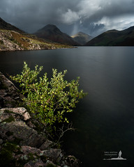 Song of Life (Greg Whitton Photography) Tags: cumbria district england lake landscape sony a7rii wastwater tree yewbarrow greatgable rock light sun crepuscular ray storm shower