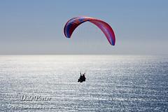 IMG_302_Paraglider_201103