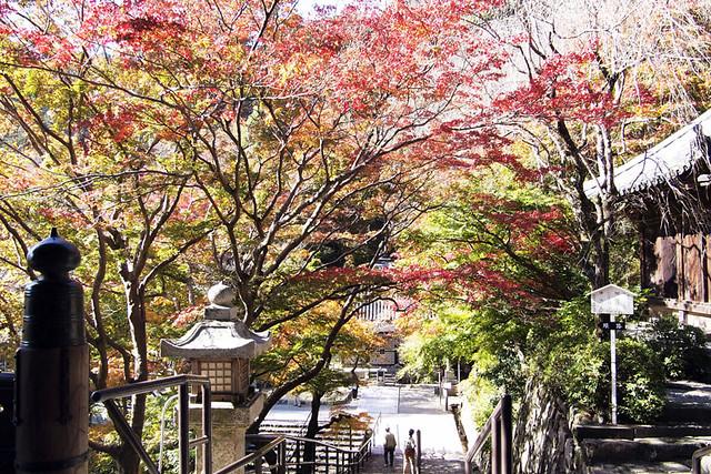 20101119_112122_長谷寺