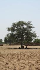 West Africa-2374
