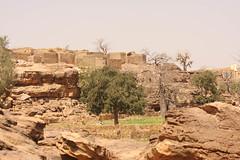 West Africa-5154